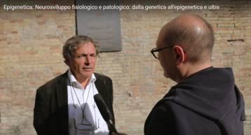 Epigenetica e neuroplasticità dello sviluppo