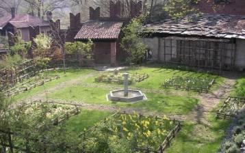 Le piante che curano: il giardino dei semplici