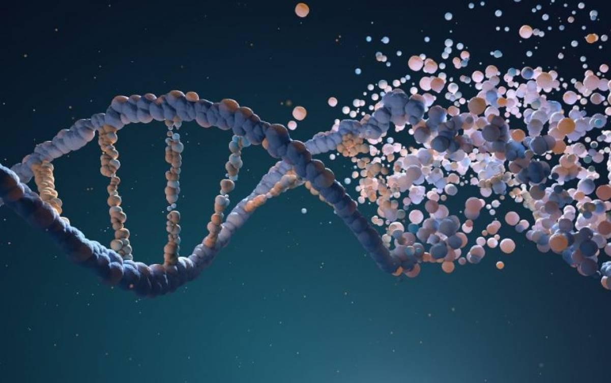 Integrare l'epigenetica nella clinica di ogni giorno