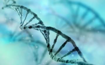 Al terzo Convegno Nazionale di Epigenetica di Urbino si incontrano teoria e pratica