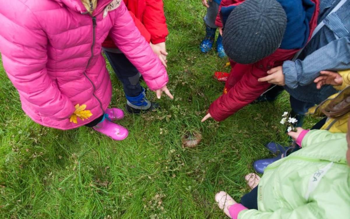 Dall'Outdoor Education il ritorno alla natura