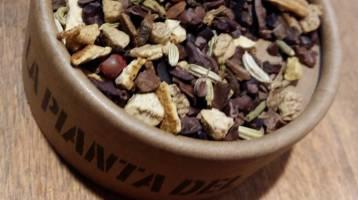 Tisane, tè e infusi alleati indiscussi per rigenerarsi, depurarsi e mantenersi in salute