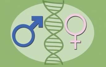 Uomini e donne: diversi davanti al  tumore