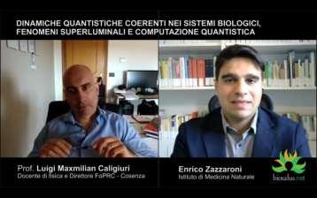 Dinamiche quantistiche coerenti nei sistemi biologici