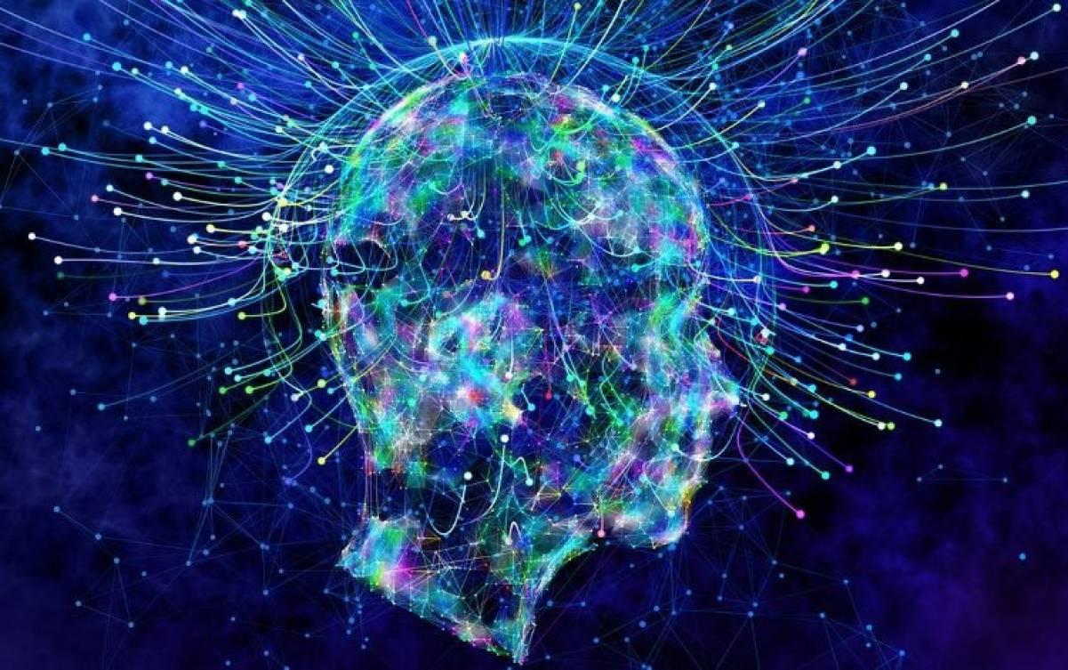 Capire i segreti del cervello e della coscienza grazie alla fisica quantistica