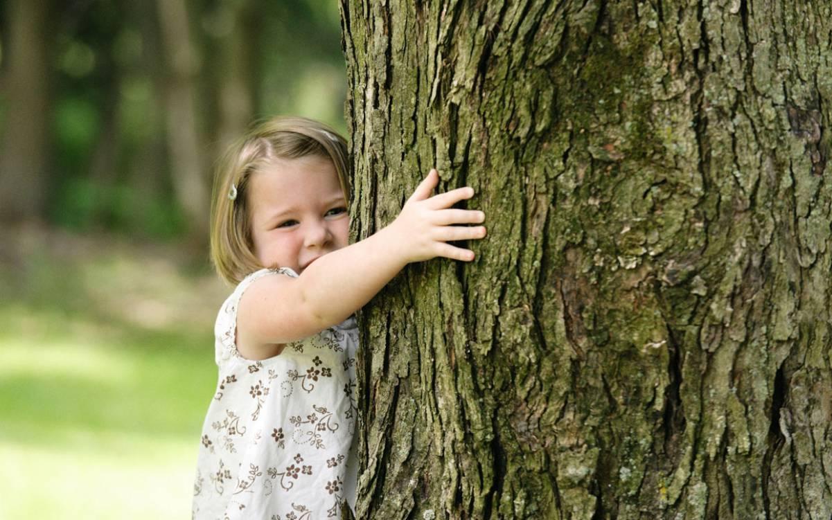 Vivere vicino agli alberi fa bene alla salute