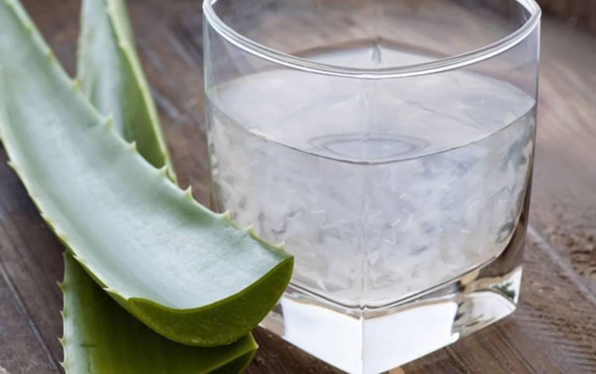 10 Buoni Motivi per Bere l'Aloe Vera
