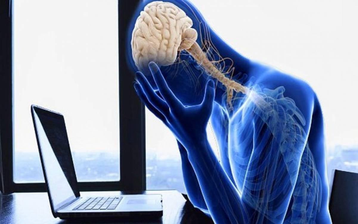 La risposta dell'organismo allo stress