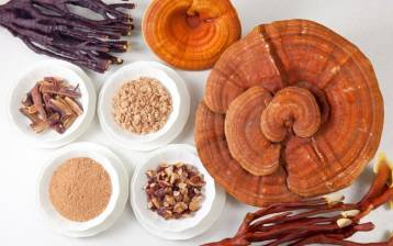 Ricette di funghi medicinali
