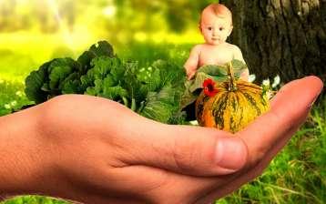Alimentazione e Sistema Immunitario del Bambino