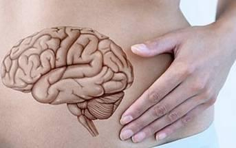 L'intestino, il nostro secondo cervello