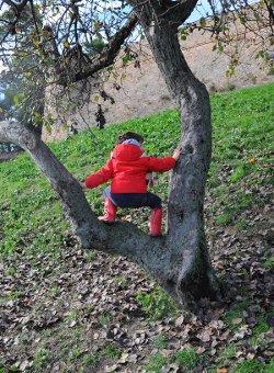 Bimbi nella natura
