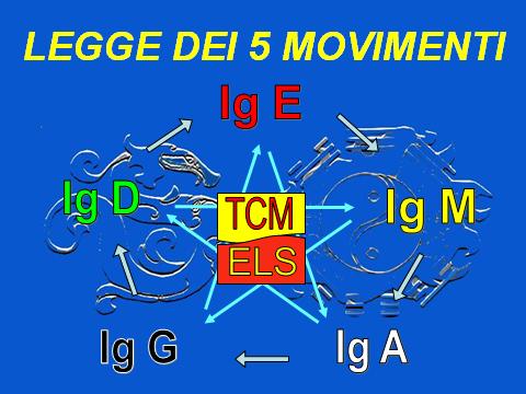 legge dei 5 movimenti 3