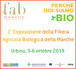 FAB Marche 2019