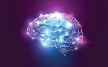ISTINTO, EMOZIONE, RAGIONE: la teoria dei tre cervelli